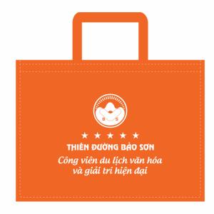 Túi xách bảo vệ môi trường